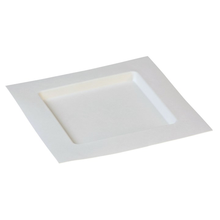 Naturesse Sugarcane Compostable Disposable Dedra Plate 224 X 224mm