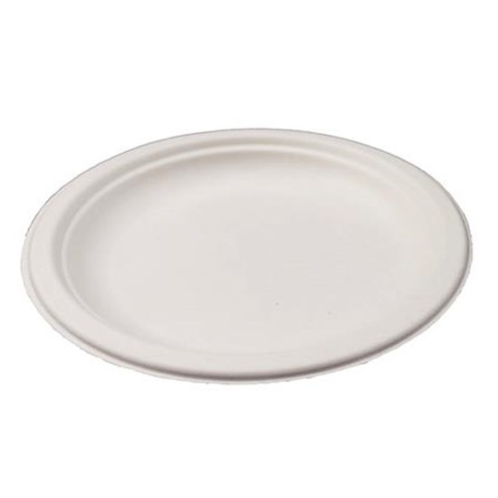 6 INCH WHITE BAGASSE SUGARCANE COMPOSTABLE DISPOSABLE SIDE PLATES