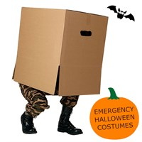 :) EMERGENCY HALLOWEEN COSTUMES - 387 X 257 X 187MM PLAIN BROWN BOXES GLUED REVERSE